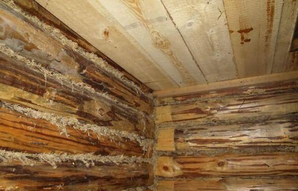 Как положить потолок в бане внутри своими руками